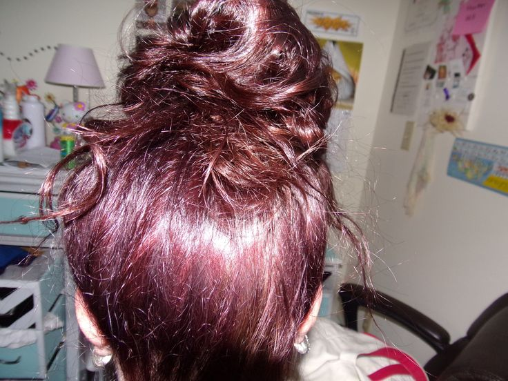 Natural Instincts By Clairol Hair Color Egyptian Plum