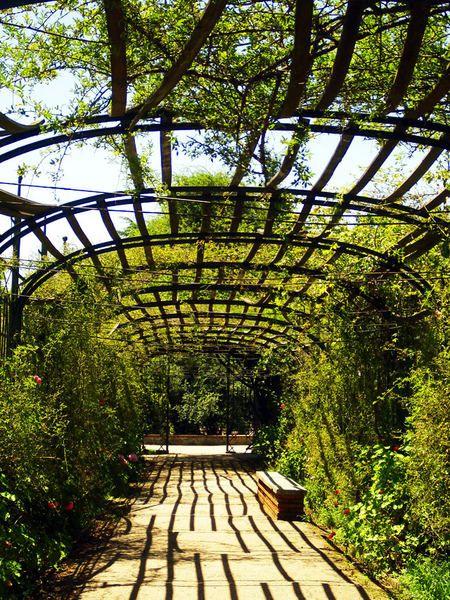 El parque del Prado (Montevideo)