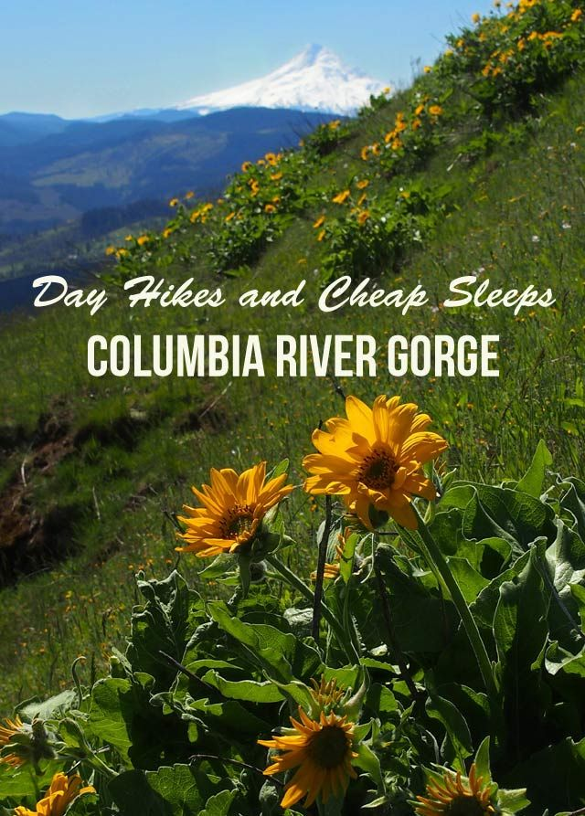 Day Hikes and Cheap Sleeps in Washington's Columbia River Gorge | nwtripfinder.com