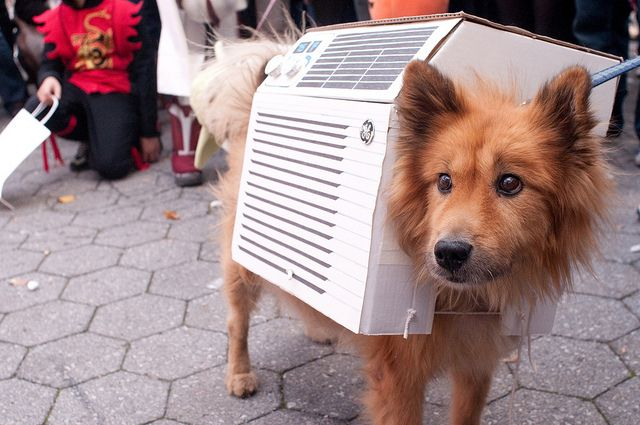 39 Best Hvac Humor Images On Pinterest Funny Photos