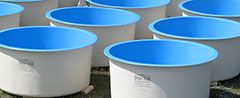 Fiberglass Aquaculture Tanks for Fish Farming | Dura-tech Fiberglass Products