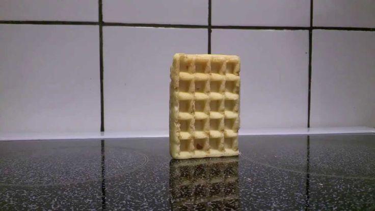 Waffle falling over...