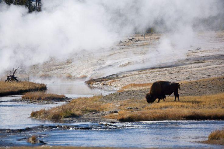 Parque Nacional de Yellowstone (EE UU)