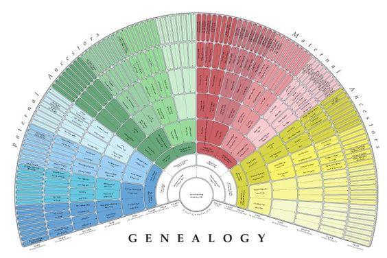 Faire l'arbre généalogique de notre fille. Modèle intéressant pour visualiser les deux côtés de la famille.