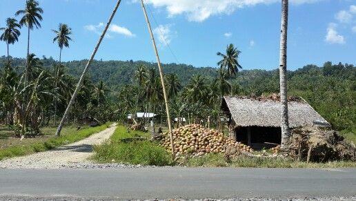 Desa Sulu