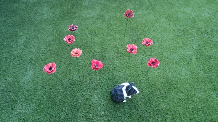 ceramic poppy's by Rola Hengstman
