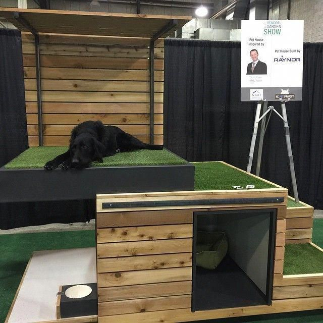 How To Choose The Perfect Dog Bed For Your Pet Cool Dog Houses