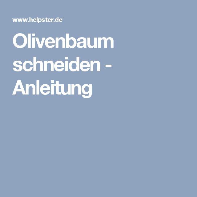 Olivenbaum schneiden - Anleitung