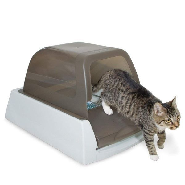 Top 5 Best Self Cleaning Litter Box In 2020 Review Automatic Cat Litter Automatic Litter Box Litter Box Covers