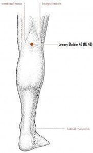 knee-acupressure-point