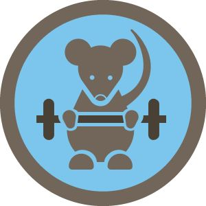 My absolute favorite foursquare badge. The Gym Rat! #fitcity