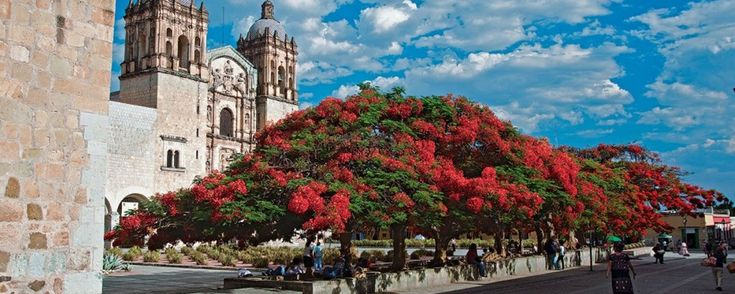 Hoteles y hostales baratos en Oaxaca. ¿Vas a viajar a Oaxaca y no quieres gastar mucho dinero en hospedaje? Estas opciones de hoteles y hostales te encantarán.