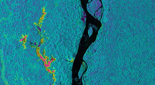 On March 17, 2013, NASAs Uninhabited Aerial Vehicle Synthetic Aperture Radar (UAVSAR) acquired synthetic aperture radar data over the Napo River in Ecuador and Peru. The image colors indicate the likelihood of inundation (flooding) beneath the forest canopy, which is difficult to determine using traditional optical sensors. Image credit: NASA/JPL-Caltech