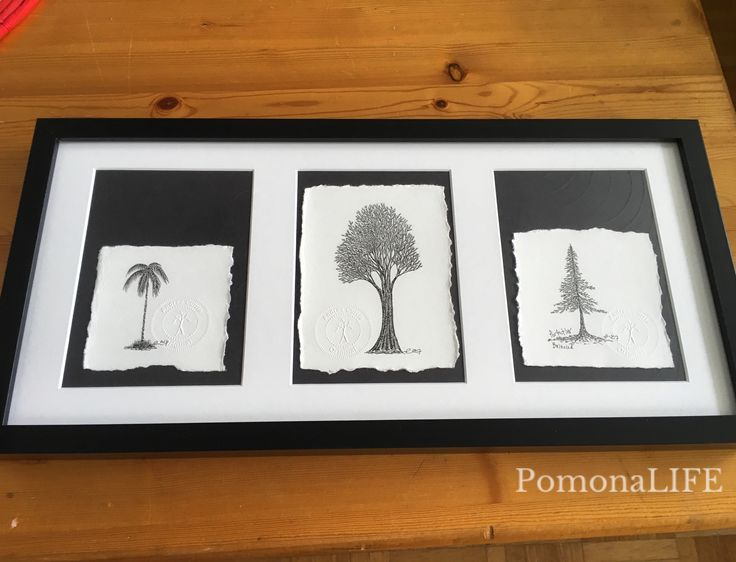 "Today is s good day to be perfectly balanced...  ""Perfectly Balanced"" (A triptych) 10.25x20.25 Original Tree Art by #acurrie #pomonalife  Art for sale, msg for details"
