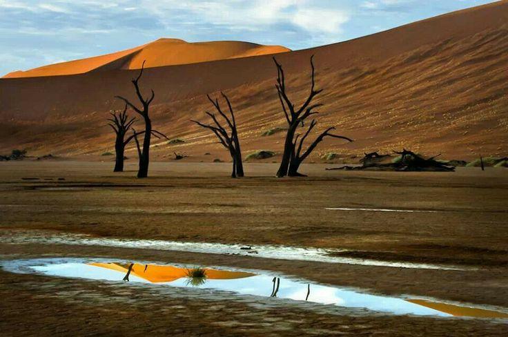 Beautiful water in desert