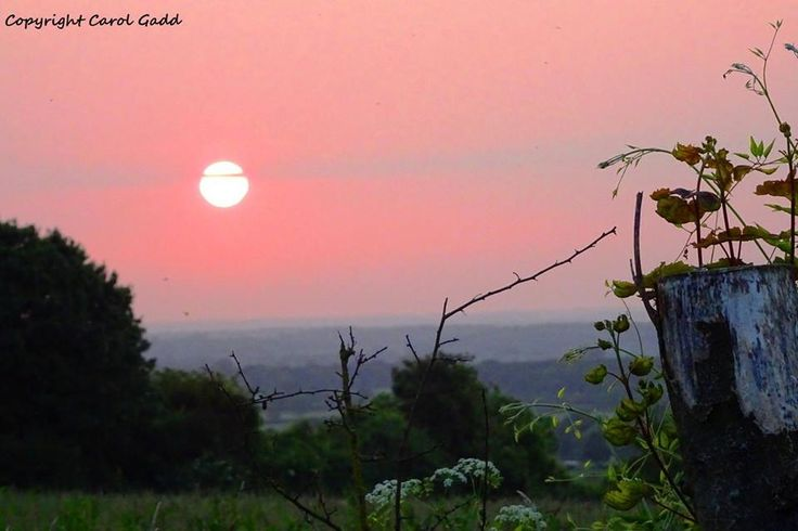 Greenhill sunset original photographic print, Greenhill, Wiltshire, Countryside, sunset, nature, art, collectibles, home by ByGaddArtandDesign on Etsy