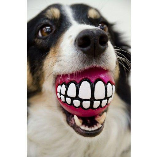 Rogz Grinz Pink 7 cm - Hundeleker - Hund  animail.no