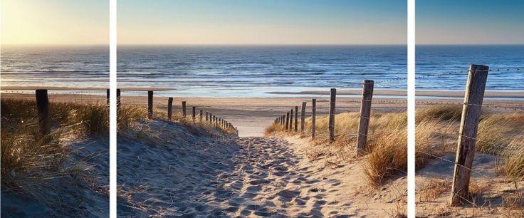 Olha Rohulya: Weg zum Nordseestrand in Gold Sonnenuntergang Sonnenschein , Nordholland , Niederlande - Leinwandbild, mehrteilig 60 x 80 cm Leinwandbilder