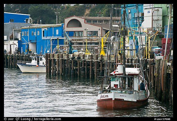 Fishing boats and pier newport oregon you can buy fish for Newport oregon fishing