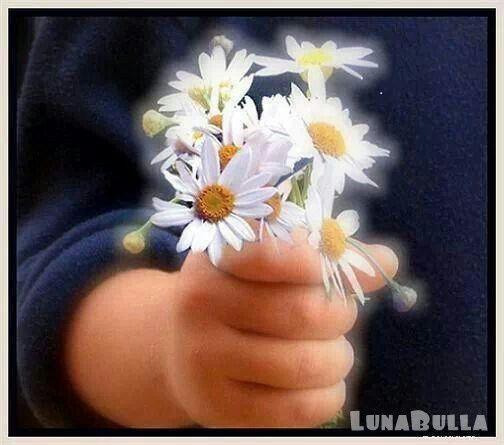 Attraverserò questa vita una volta sola. Se posso fare una cosa buona o dire una cosa gentile a un altro essere umano devo farlo adesso, perchè non passerò mai più da questo luogo.   ~ Madre Teresa di Calcutta ~
