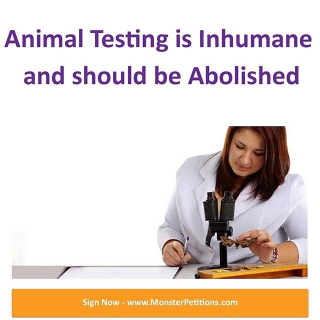 Animal Testing Is Inhumane And Should Be Abolished We Would Like