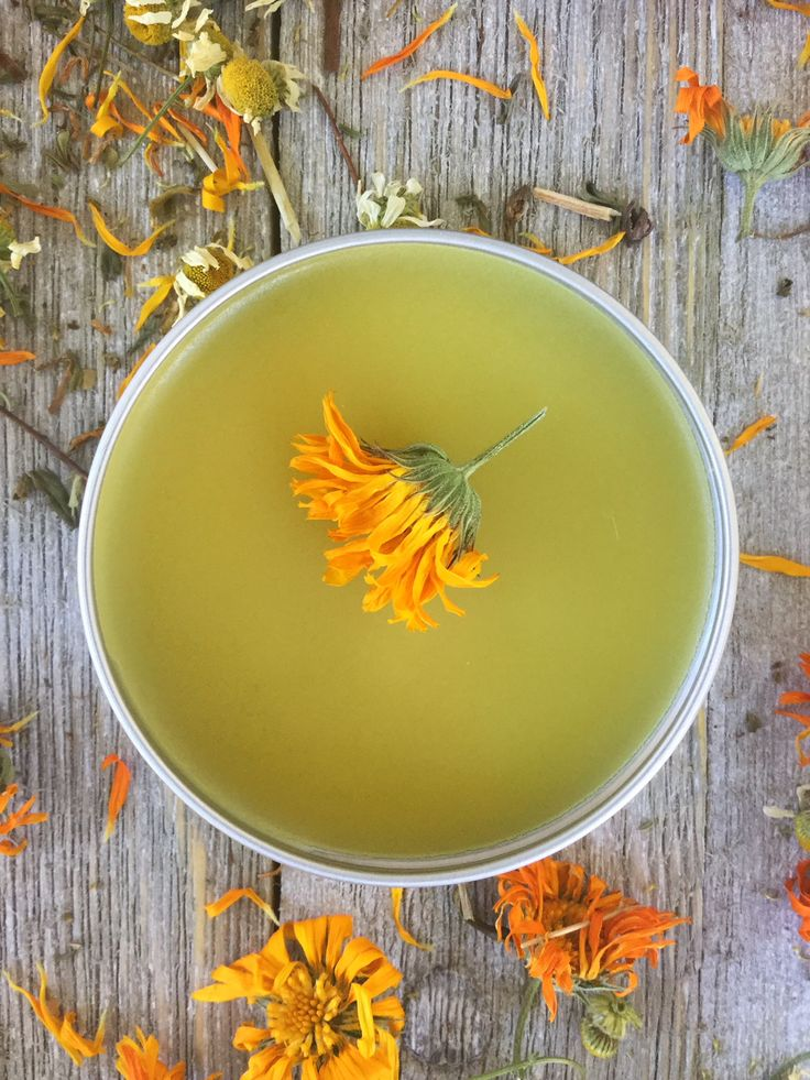 How to Make an All Purpose Healing Salve with Calendula, Chamomile & St. John's Wort | Herbal Home Remedies | DIY | Homemade | Herbal | Herbalism | My Healthy Homemade Life
