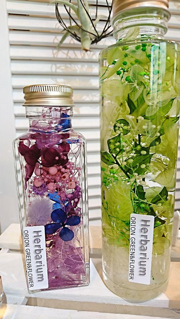 ハーバリウム 販売とレッスン | 浦和美園の花屋オリオンは観葉植物レンタルの株式会社森華樹園が運営