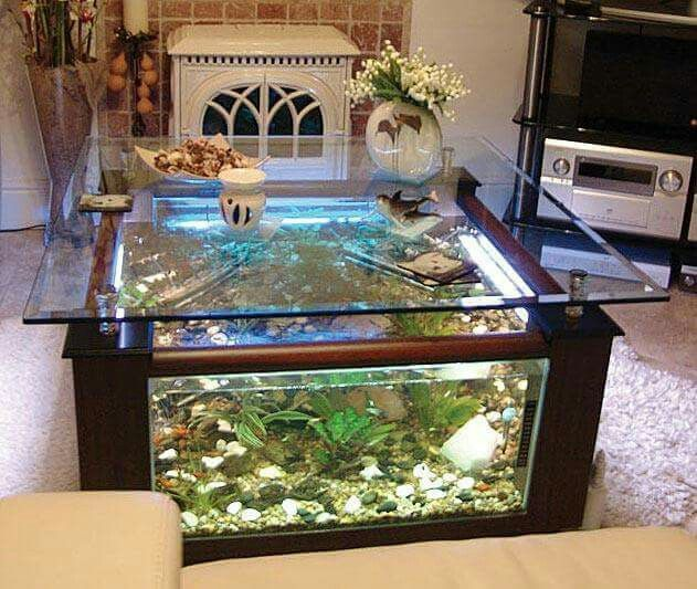 Mesa de centro pecera home pinterest fish tanks for Fish tank house