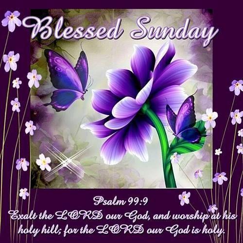 Blessed Sunday Psalm 99:9 good morning sunday sunday quotes good morning quotes happy sunday sunday blessings religious sunday…