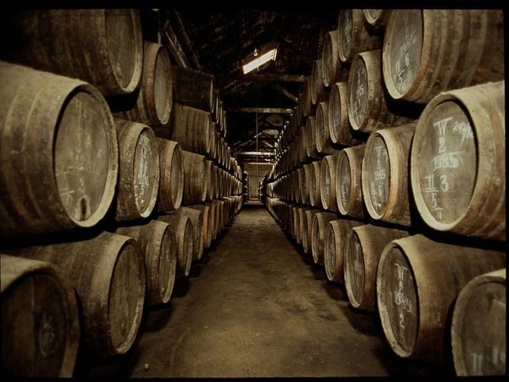 Douro Wine Cellars....jummiee:)