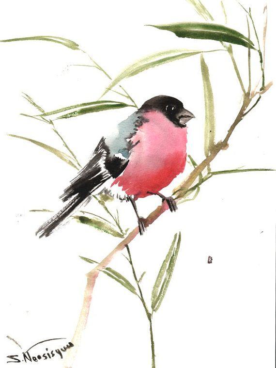 Gimpel original Aquarellzeichnung 12 X 9 in Vogel von ORIGINALONLY