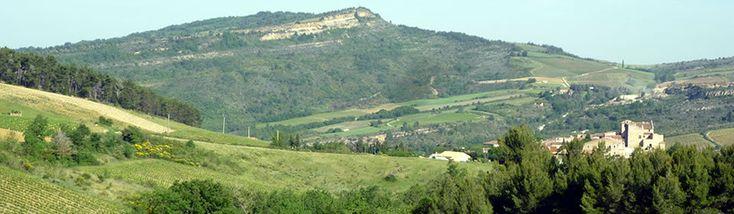 Vins de Crémant De Limoux - Lavinia