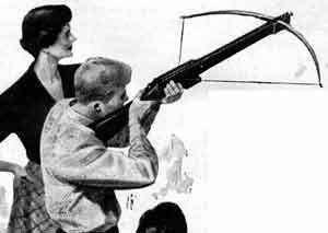 29 best Archery images on Pinterest | Archery, Archery bows and Arrow