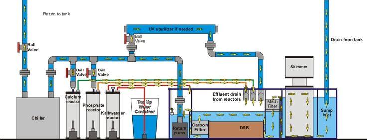 "Sump Designs Saltwater Tank | Marine Aquariums [URL=""http://www ..."
