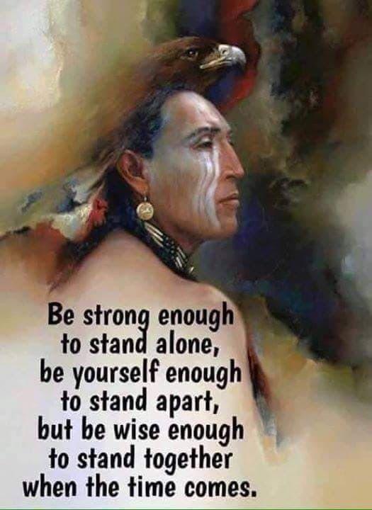 indiaanse spreuken gezegden Pin by sylvrshaddowe on First Nations | Spreuken, Citaten, Wijsheid indiaanse spreuken gezegden