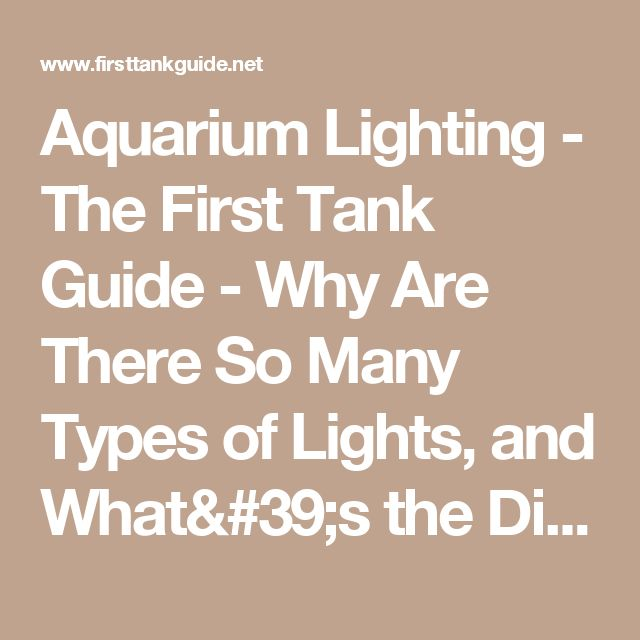 Aquarium Lighting - The First Tank Guide - Why Are There So Many Types of Lights, and What's the Difference?