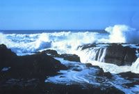 Devils Churn, located south of Yachats in the Siuslaw National Forest.