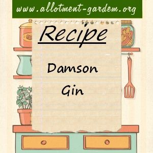 Recipe for Damson Gin. When fruit has been used, de-stone and dry on a low heat for a few hours in the oven. Can be used for fruit cakes or x-mas pudding