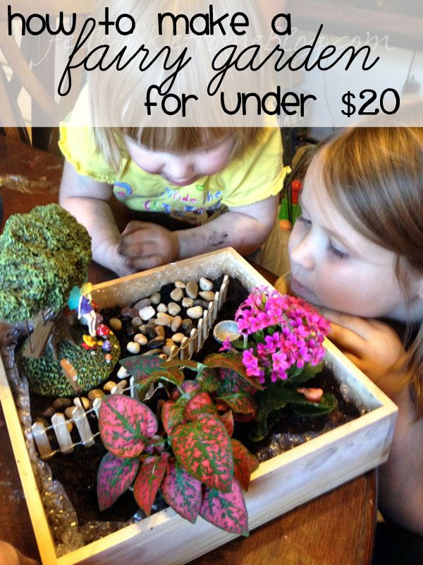 How to Make a Fairy Garden for Under $20 on http://www.feelslikehomeblog.com