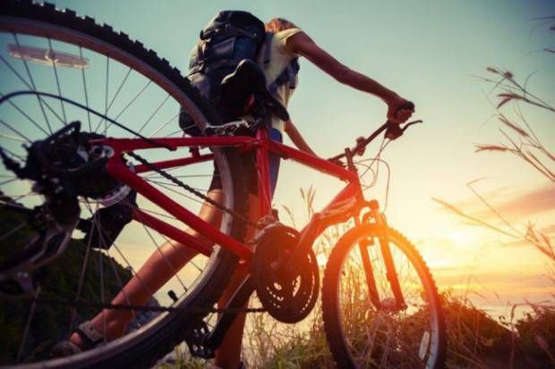 List of mountain biking operators in South Africa
