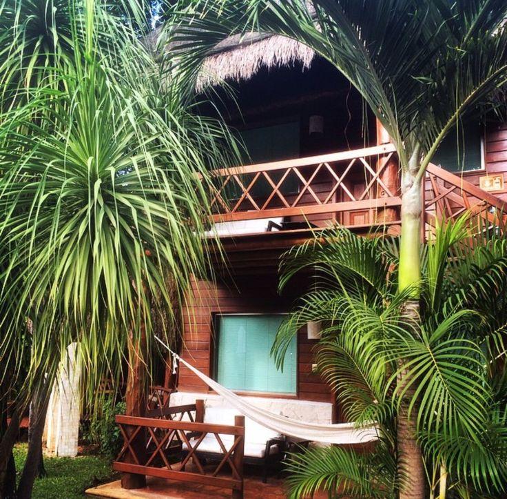 Palm Tree Breezin' Hammock Swaying in Paradise | X |