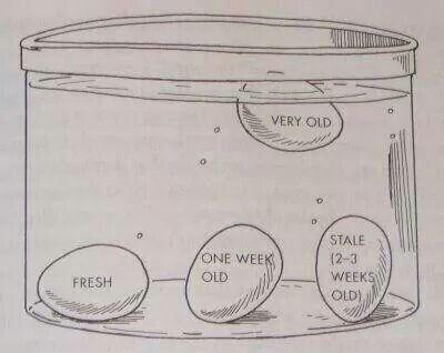 Egg float test. I often wondered what half foating meant... stale. Ok.