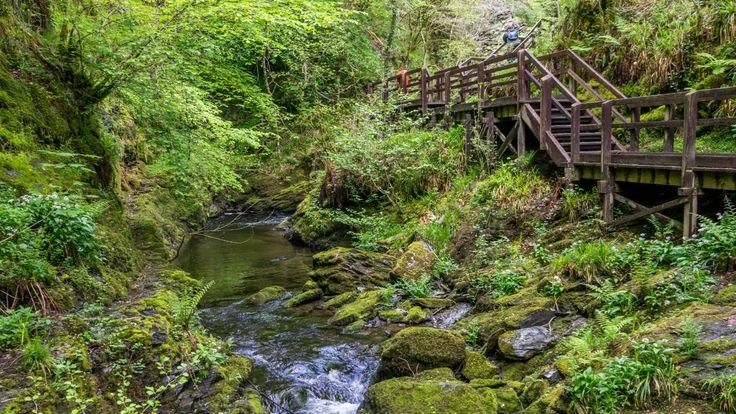 Lydford Gorge © National Trust / Philip Mann
