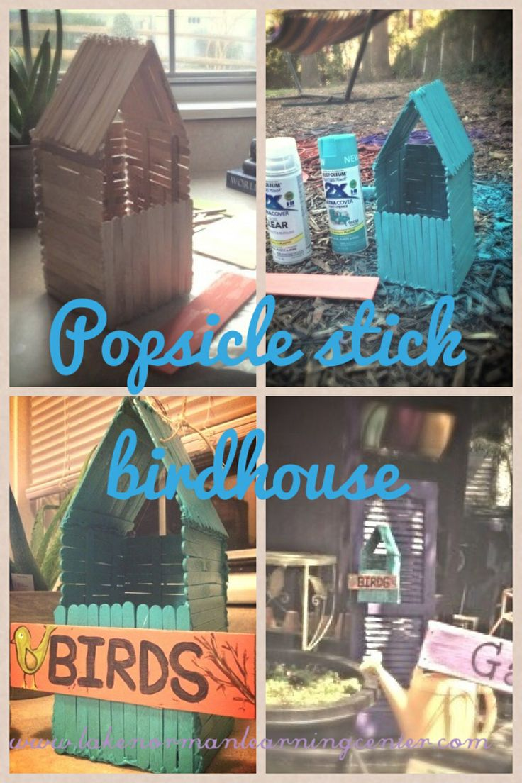 Popsicle stick birdhouse - easy DIY project for school gardens