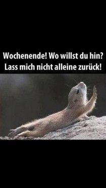 Gedanken zum WE | weekend, please don't leave me