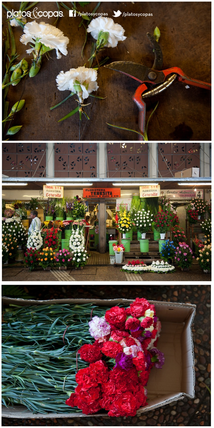 Revista Platos // Pérgola de las flores, Santiago Centro