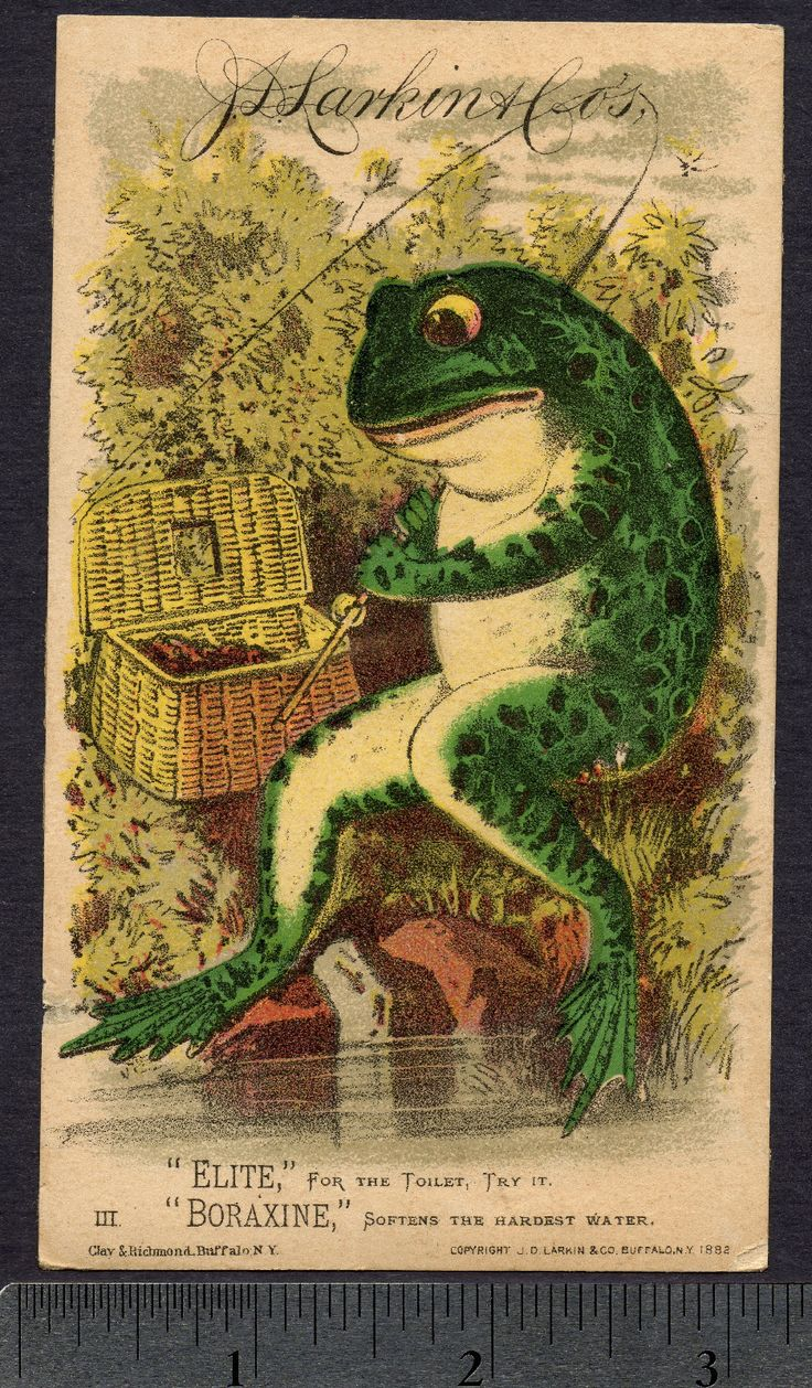 Froggies nursery wall decals by couture d 233 co - Trade Card J D Larkin Co 1882 Soaps Elite And