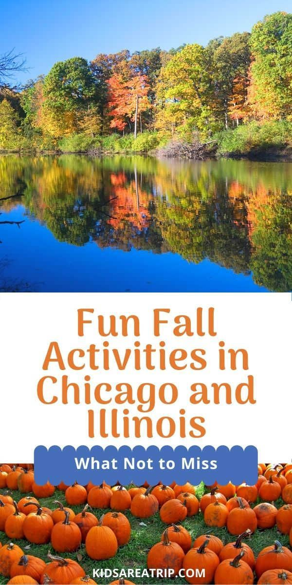 Fun Things To Do This Fall In Chicago And Illinois In 2020 Fall Travel Family Vacation Travel Fun Fall Activities
