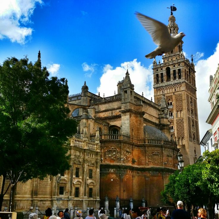 Sevilla. The heart of flamenco, the capital and largest city of Andalucia.