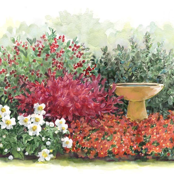 Autumn Delights Perennial & Shrub Collection